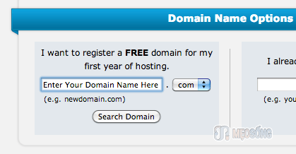 domain name options