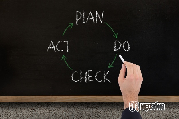 Inspect your plans and strategies